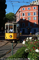 Estate e tram - Fiori